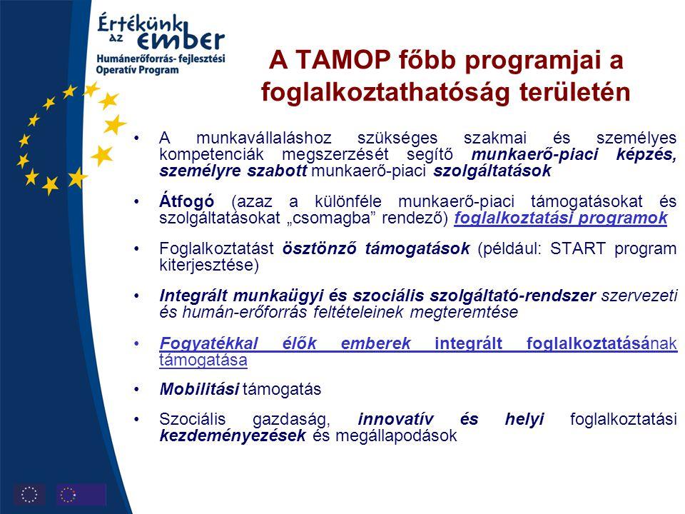 A TAMOP főbb programjai a foglalkoztathatóság területén