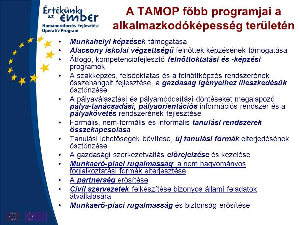 A TAMOP főbb programjai a alkalmazkodóképesség területén