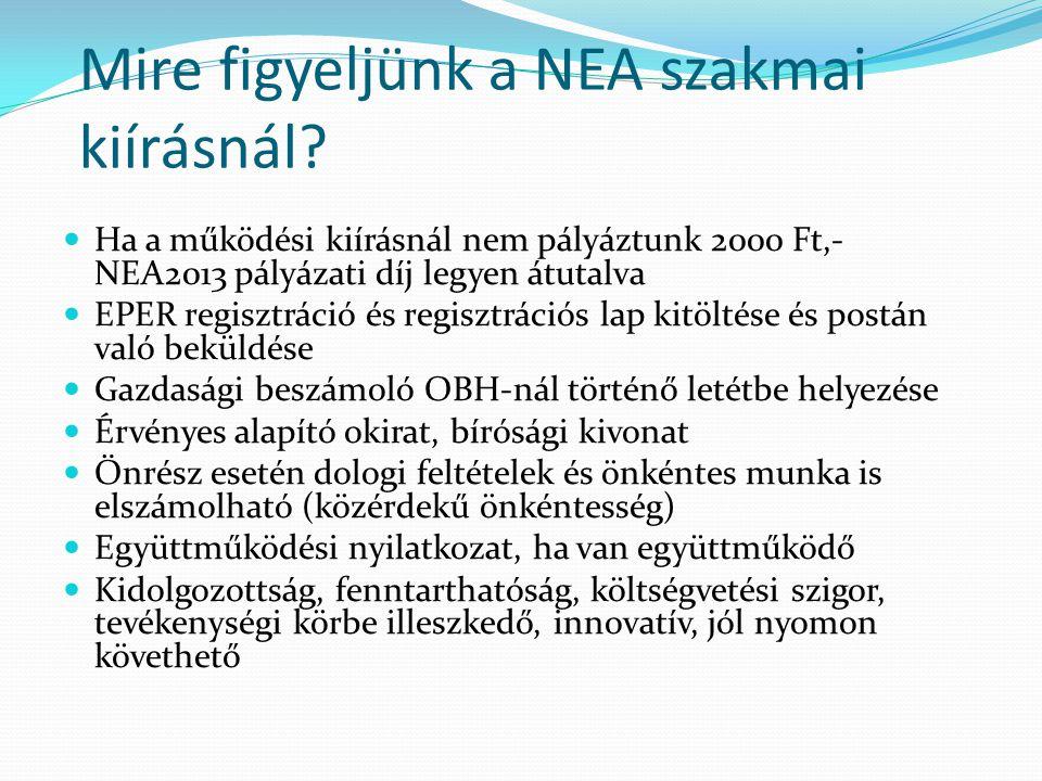 Mire figyeljünk a NEA szakmai kiírásnál