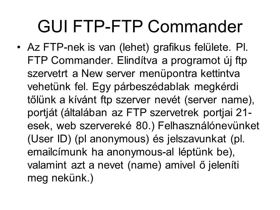 GUI FTP-FTP Commander