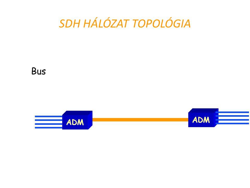 SDH HÁLÓZAT TOPOLÓGIA Bus ADM ADM