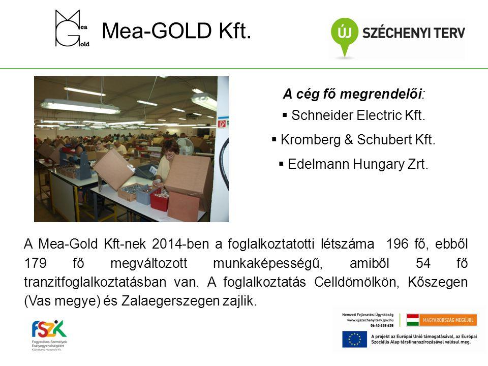 Mea-GOLD Kft. A cég fő megrendelői: Schneider Electric Kft.