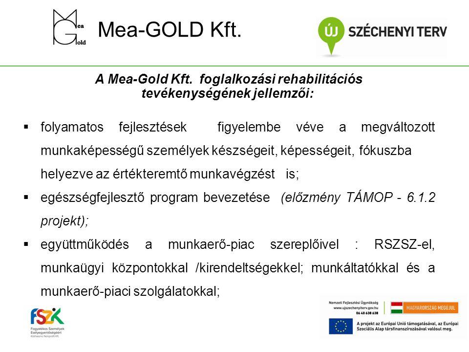 A Mea-Gold Kft. foglalkozási rehabilitációs tevékenységének jellemzői: