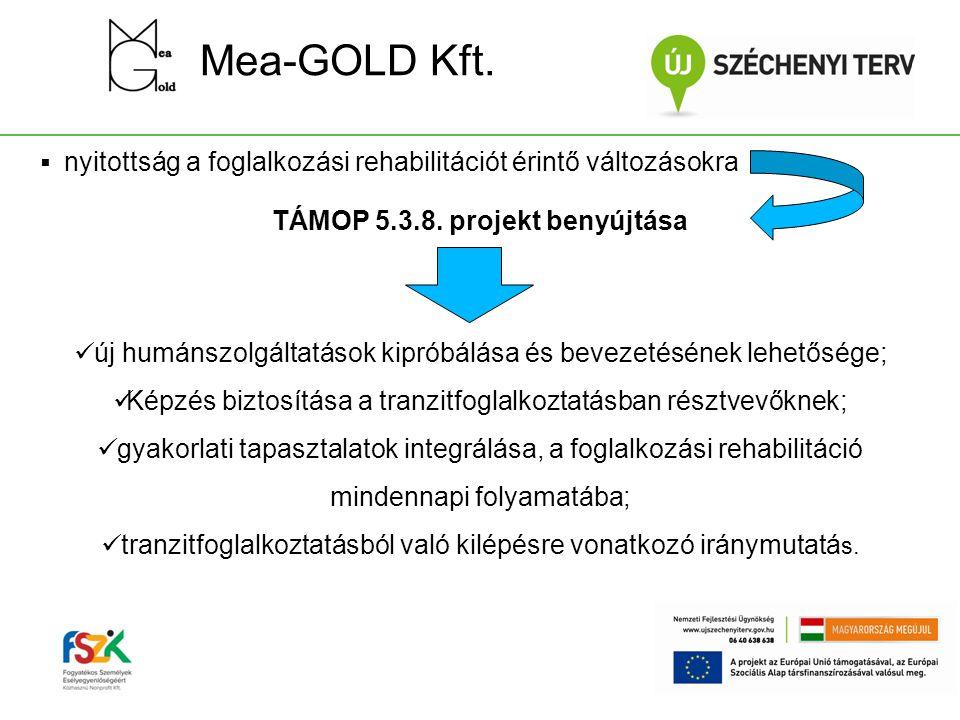 TÁMOP 5.3.8. projekt benyújtása