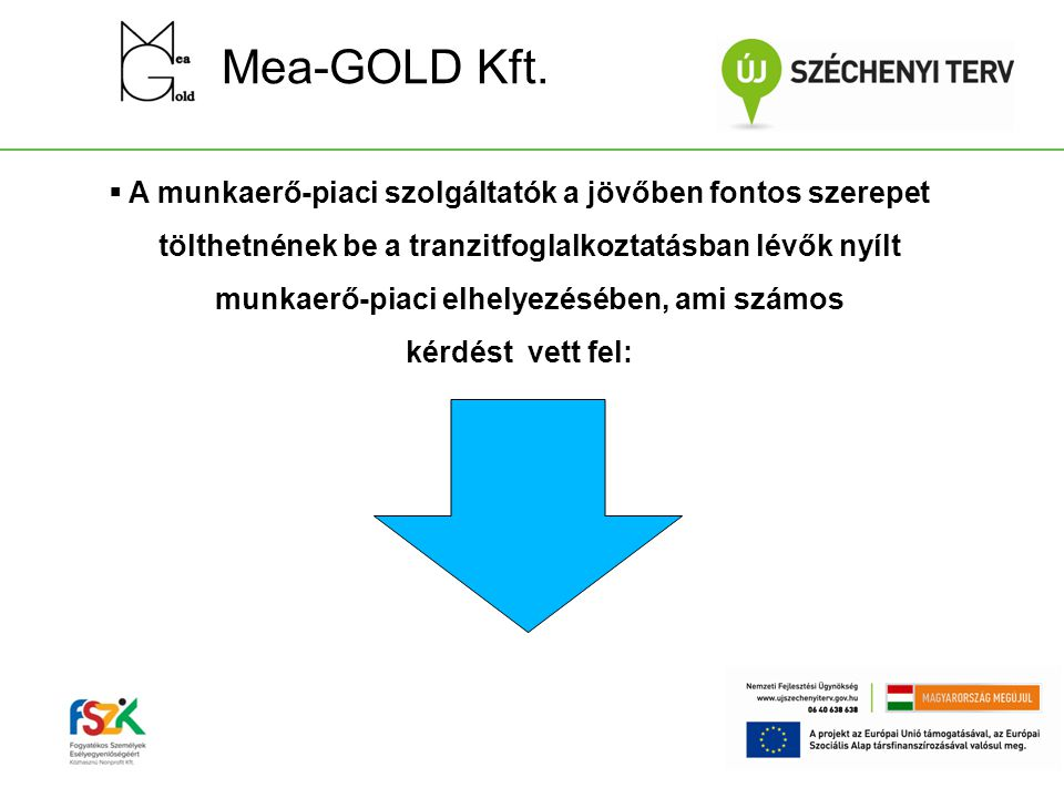 Mea-GOLD Kft.
