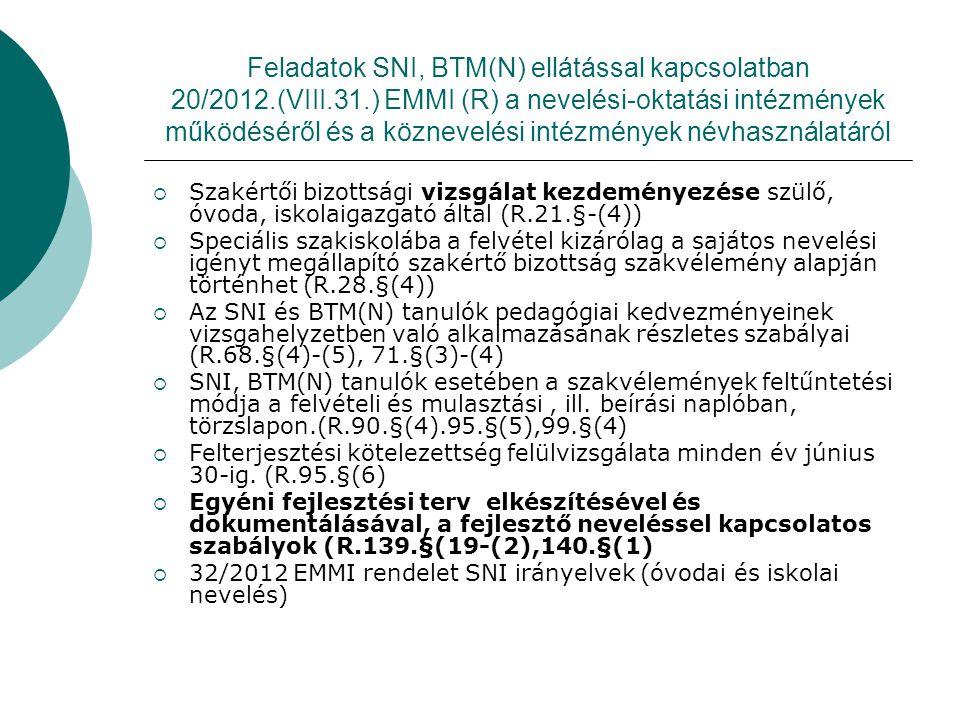 Feladatok SNI, BTM(N) ellátással kapcsolatban 20/2012. (VIII. 31