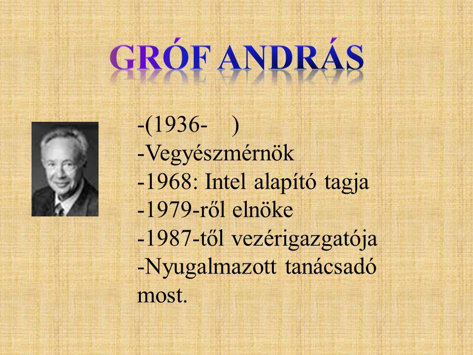 Gróf András (1936- ) Vegyészmérnök 1968: Intel alapító tagja
