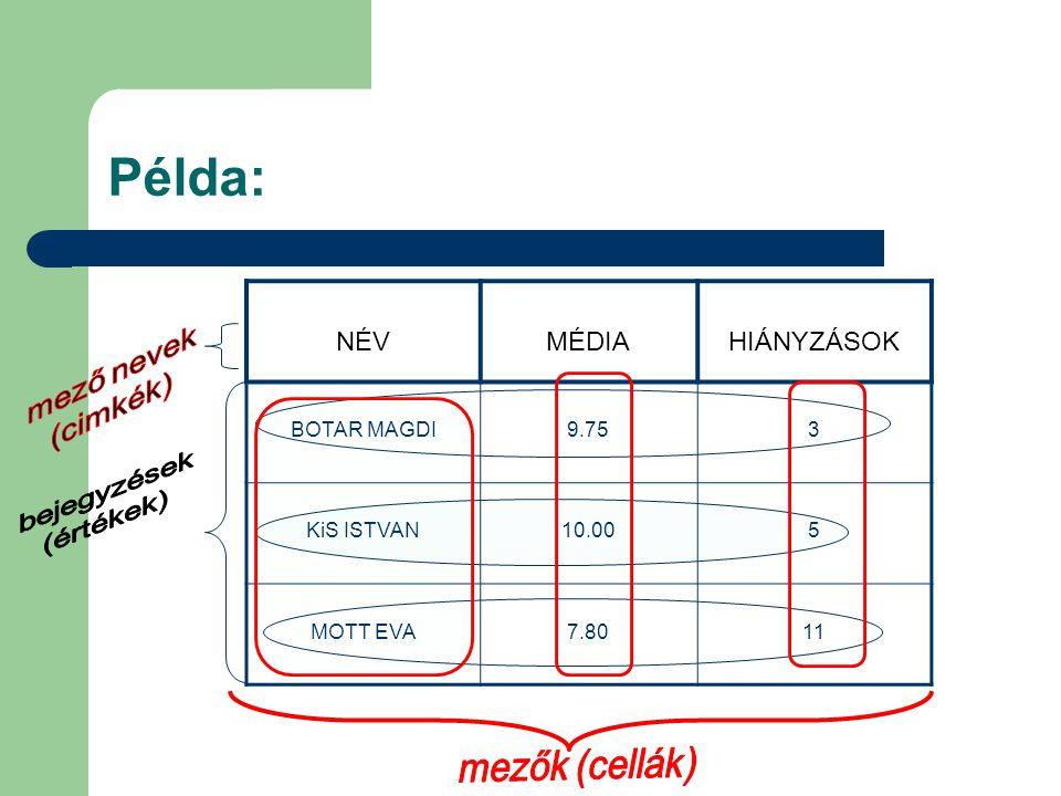 Példa: mező nevek (cimkék) mezők (cellák) NÉV MÉDIA HIÁNYZÁSOK