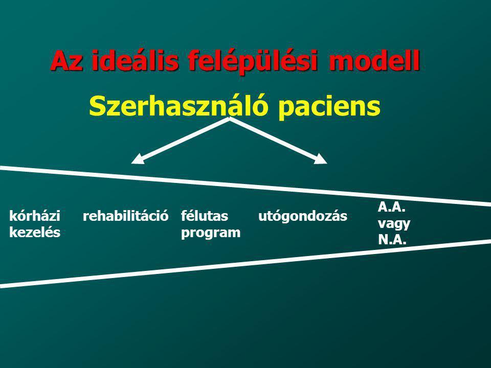 Az ideális felépülési modell