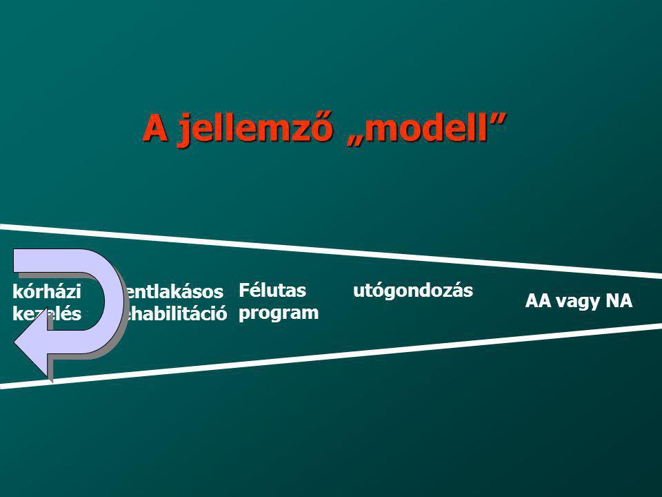 """A jellemző """"modell kórházi kezelés bentlakásos rehabilitáció Félutas"""