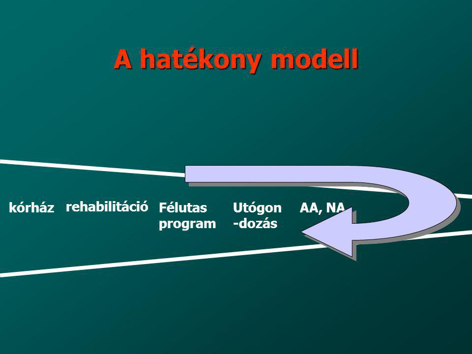 A hatékony modell kórház rehabilitáció Félutas program Utógon-dozás