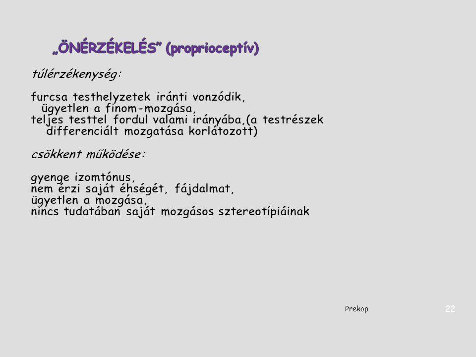 """""""ÖNÉRZÉKELÉS (proprioceptív)"""