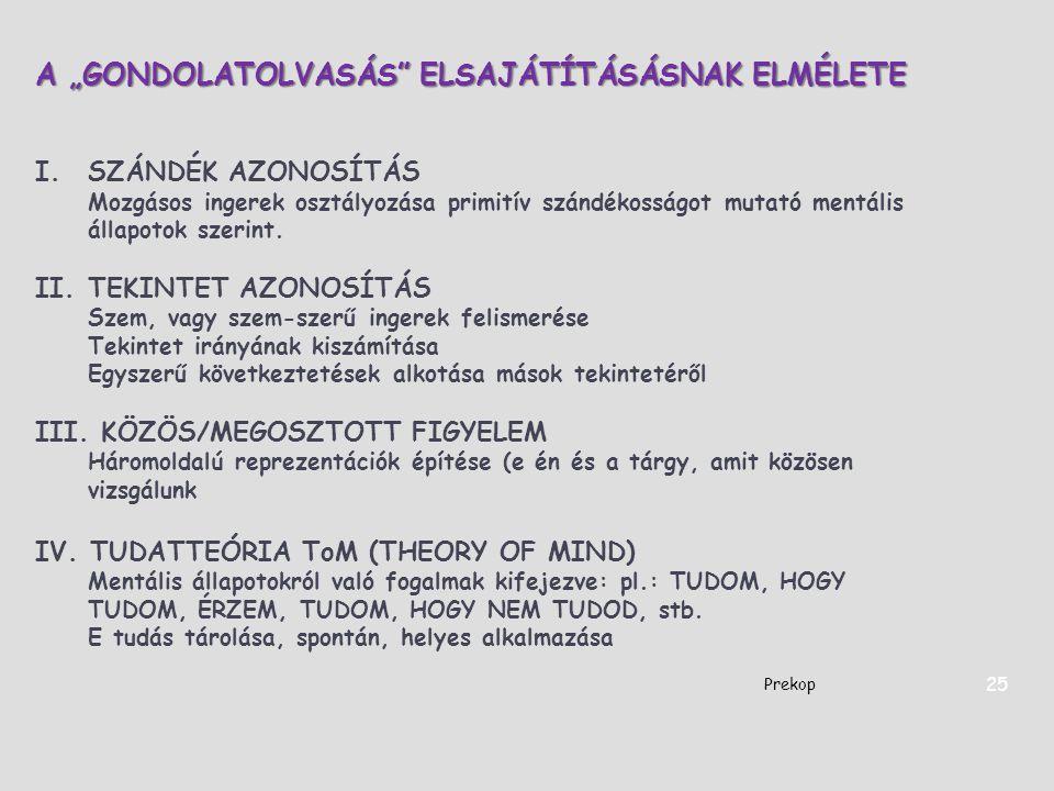 """A """"GONDOLATOLVASÁS ELSAJÁTÍTÁSÁSNAK ELMÉLETE"""