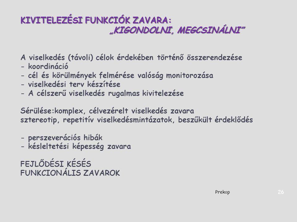 """KIVITELEZÉSI FUNKCIÓK ZAVARA: """"KIGONDOLNI, MEGCSINÁLNI"""