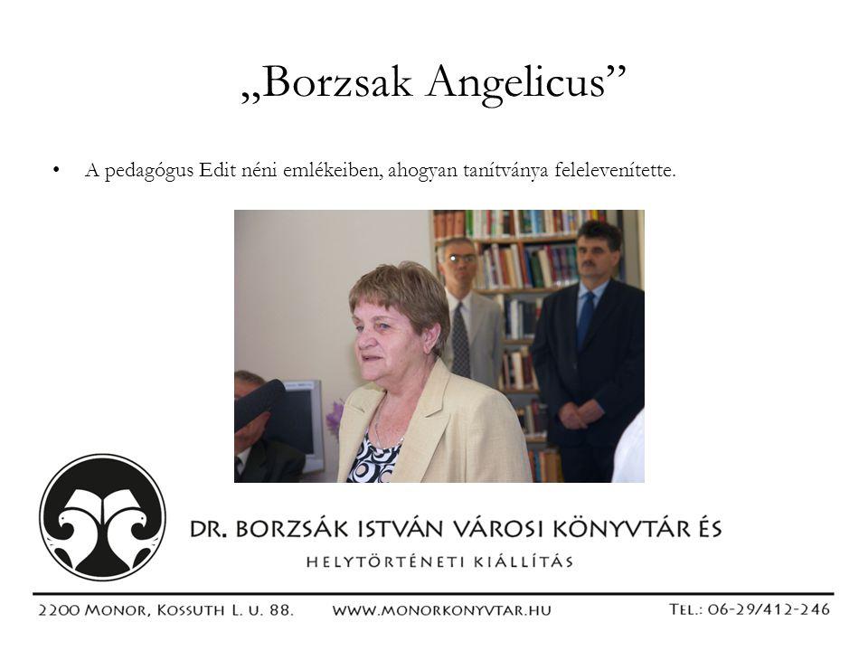 """""""Borzsak Angelicus A pedagógus Edit néni emlékeiben, ahogyan tanítványa felelevenítette."""