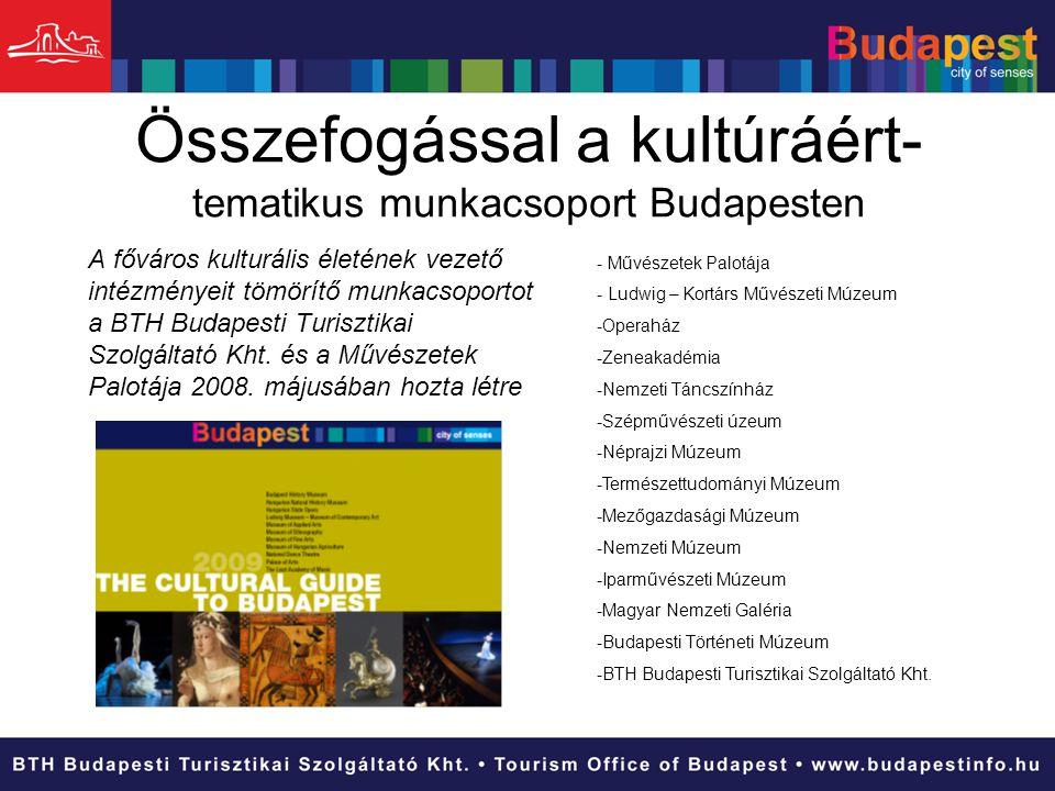Összefogással a kultúráért- tematikus munkacsoport Budapesten