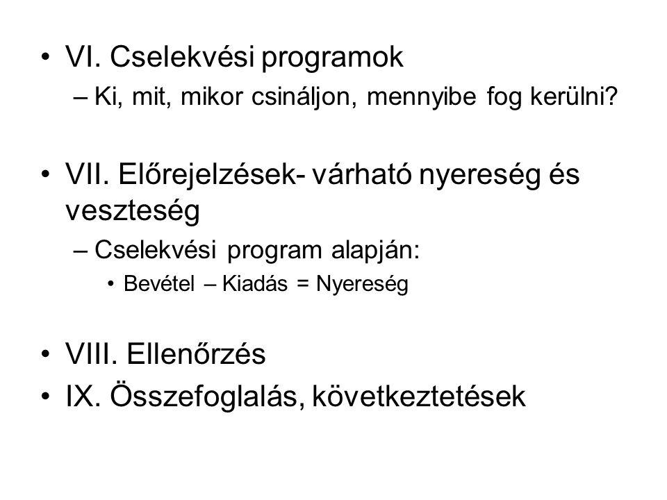 VI. Cselekvési programok