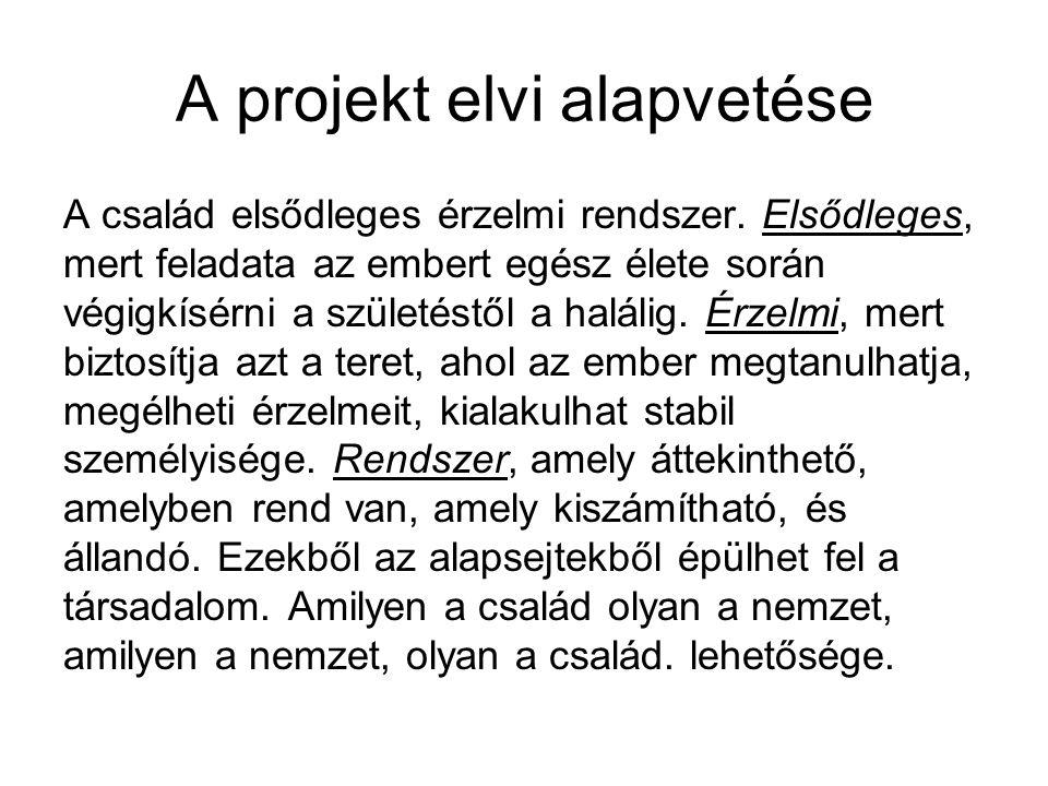 A projekt elvi alapvetése