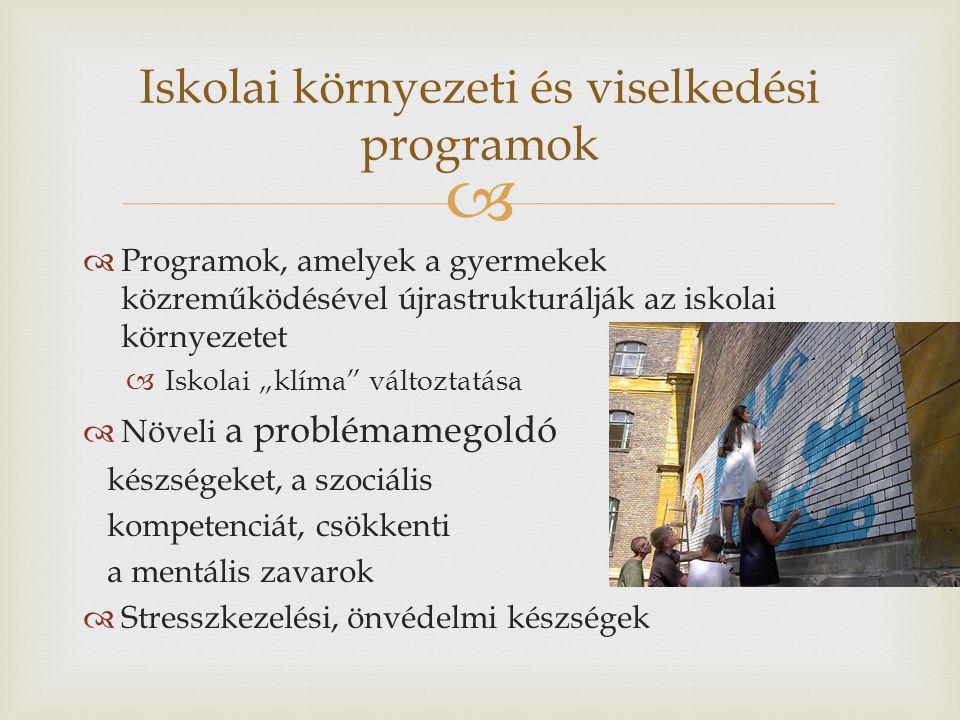 Iskolai környezeti és viselkedési programok