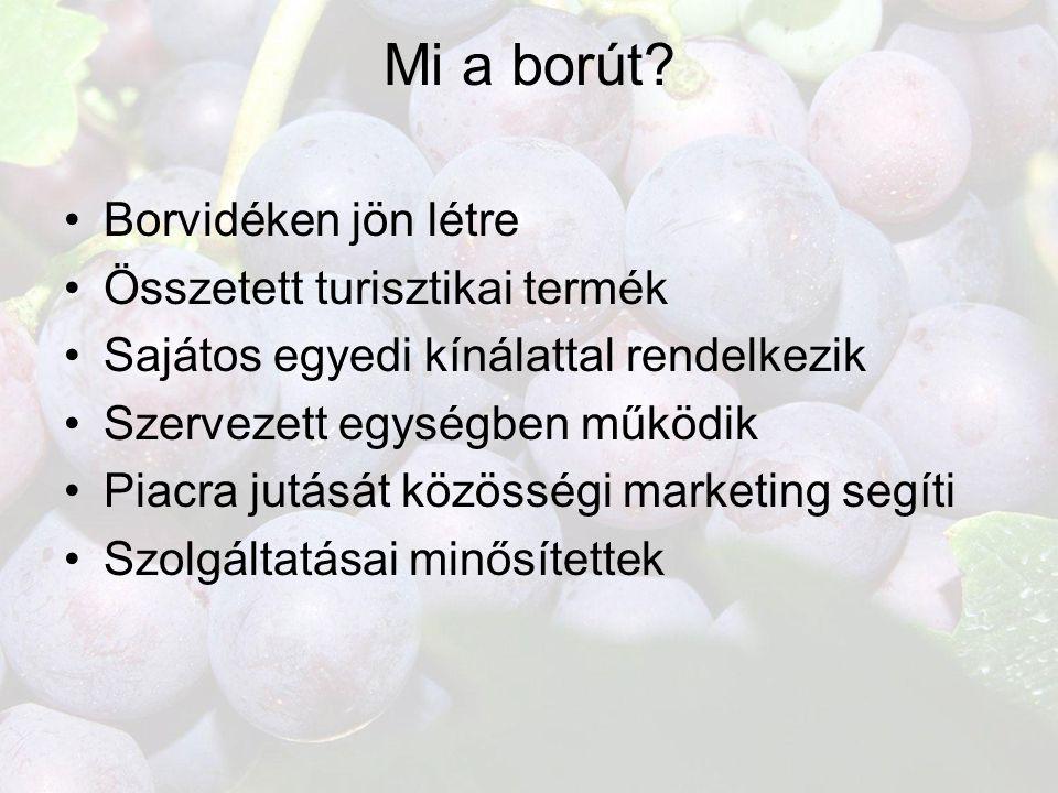 Mi a borút Borvidéken jön létre Összetett turisztikai termék