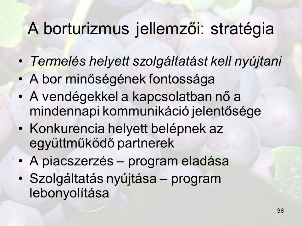 A borturizmus jellemzői: stratégia