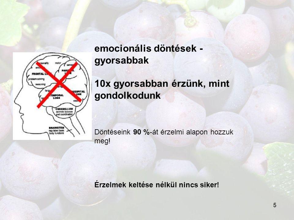 emocionális döntések -gyorsabbak