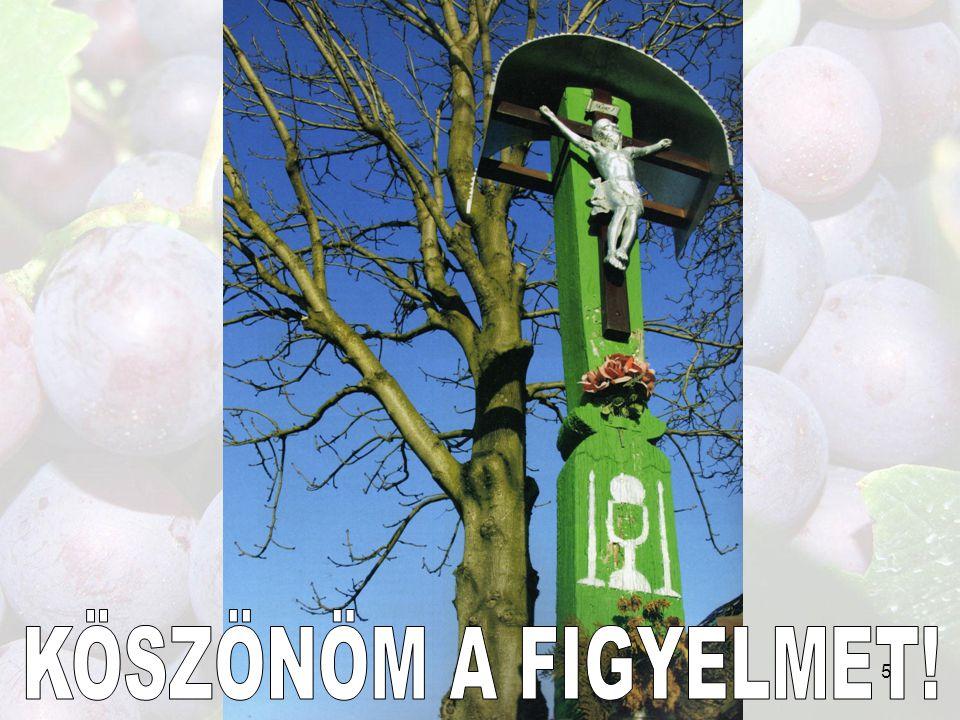 KÖSZÖNÖM A FIGYELMET! 56