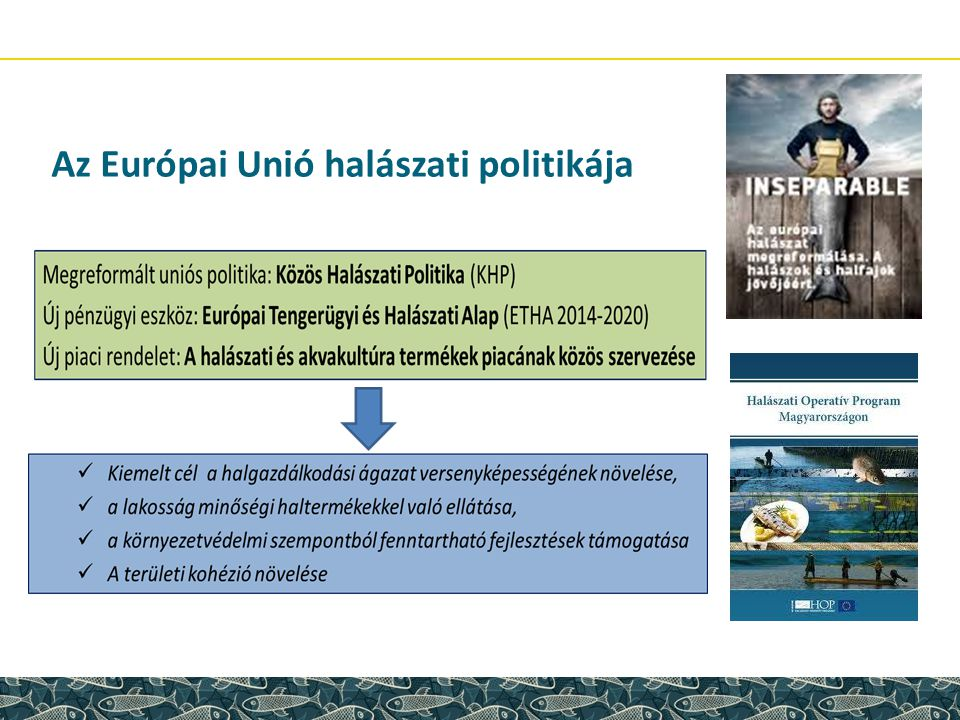 Az Európai Unió halászati politikája