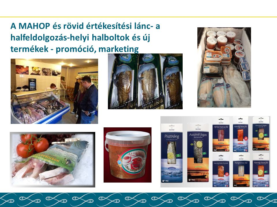 A MAHOP és rövid értékesítési lánc- a halfeldolgozás-helyi halboltok és új termékek - promóció, marketing
