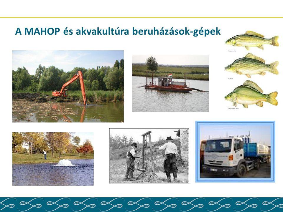 A MAHOP és akvakultúra beruházások-gépek