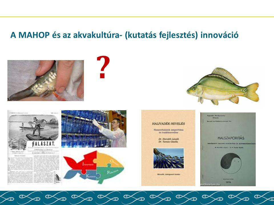 A MAHOP és az akvakultúra- (kutatás fejlesztés) innováció
