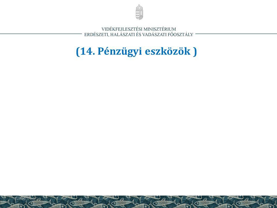 (14. Pénzügyi eszközök ) 2012.01.10. 43