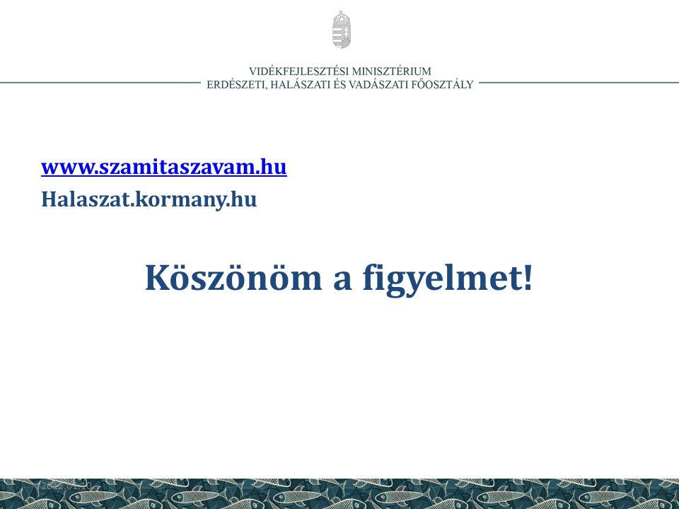 Köszönöm a figyelmet! www.szamitaszavam.hu Halaszat.kormany.hu