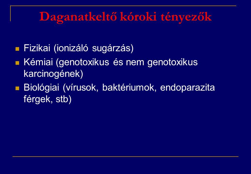 Daganatkeltő kóroki tényezők