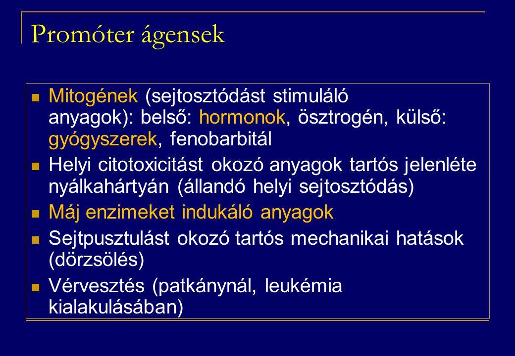Promóter ágensek Mitogének (sejtosztódást stimuláló anyagok): belső: hormonok, ösztrogén, külső: gyógyszerek, fenobarbitál.