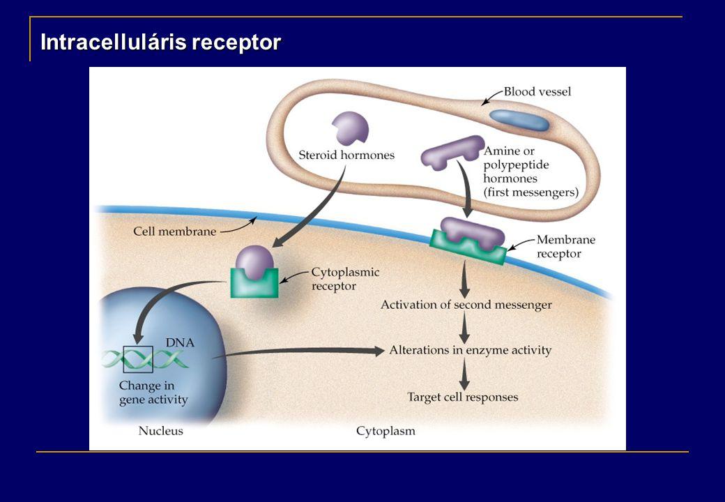Intracelluláris receptor