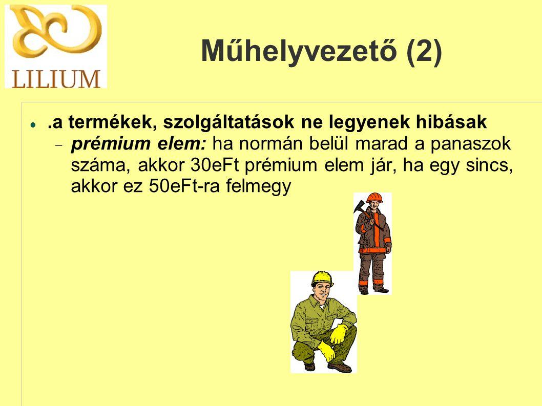 Műhelyvezető (2) .a termékek, szolgáltatások ne legyenek hibásak