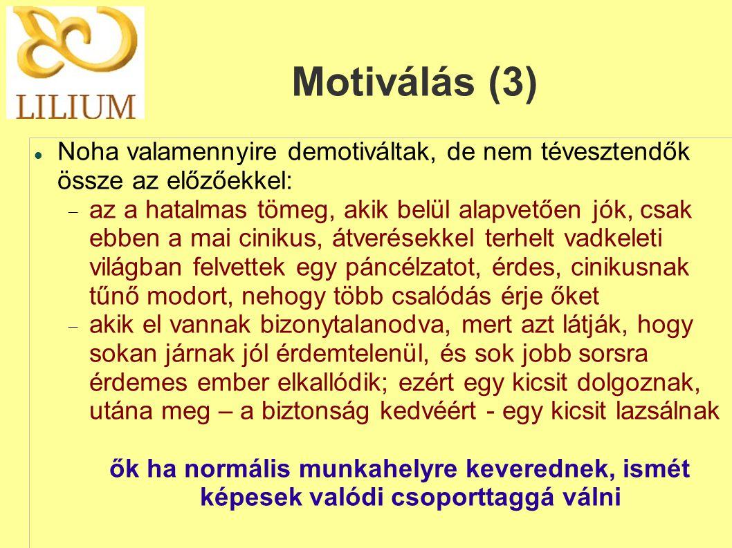 Motiválás (3) Noha valamennyire demotiváltak, de nem tévesztendők össze az előzőekkel:
