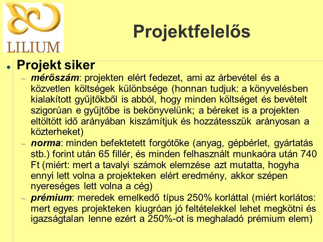 Projektfelelős Projekt siker