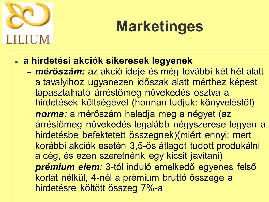 Marketinges a hirdetési akciók sikeresek legyenek
