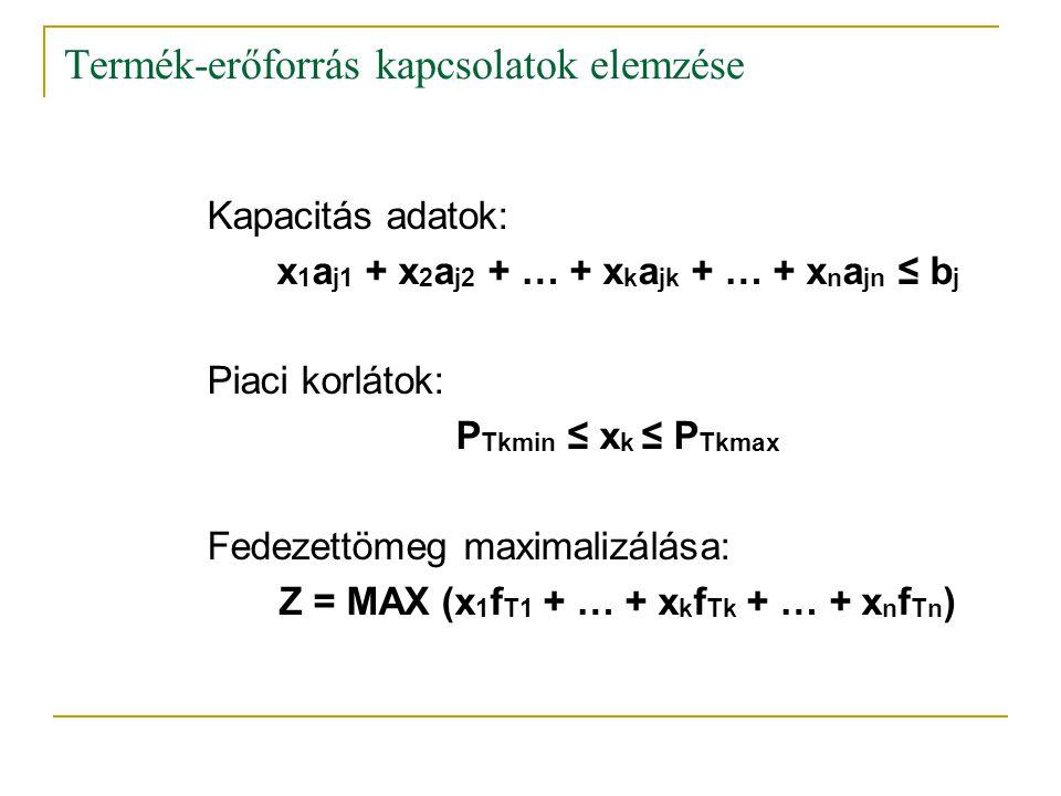 Termék-erőforrás kapcsolatok elemzése