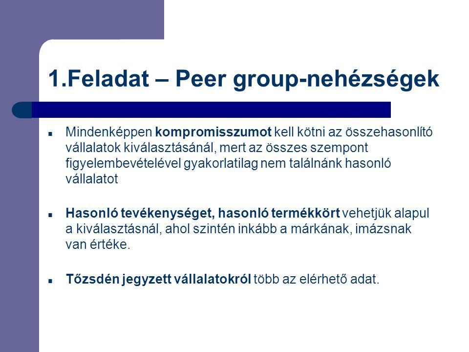 1.Feladat – Peer group-nehézségek