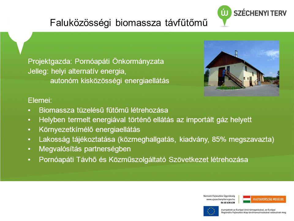 Faluközösségi biomassza távfűtőmű