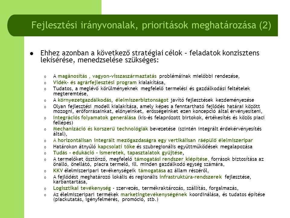 Fejlesztési irányvonalak, prioritások meghatározása (2)