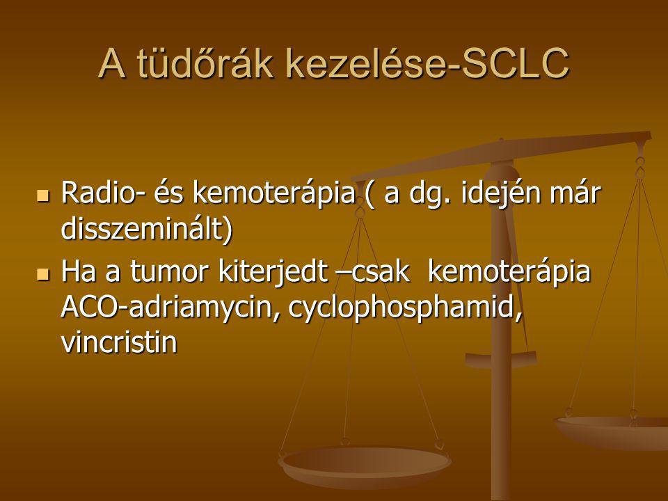 A tüdőrák kezelése-SCLC