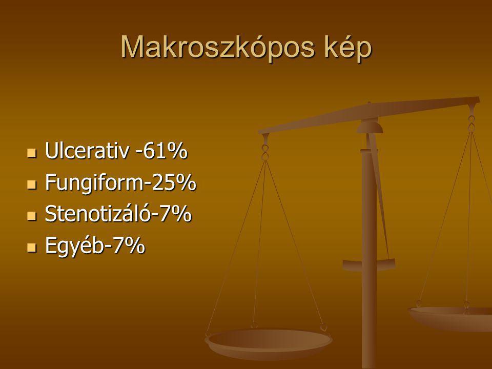 Makroszkópos kép Ulcerativ -61% Fungiform-25% Stenotizáló-7% Egyéb-7%