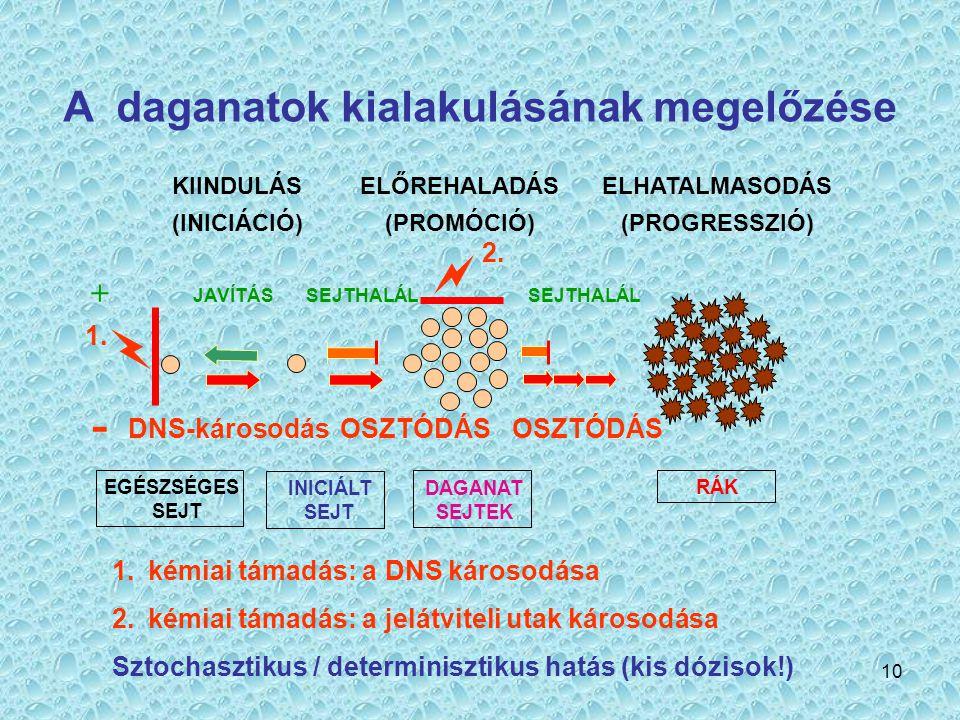 A daganatok kialakulásának megelőzése
