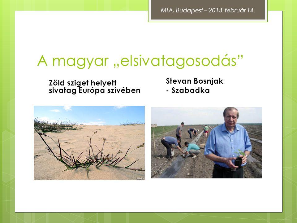 """A magyar """"elsivatagosodás"""