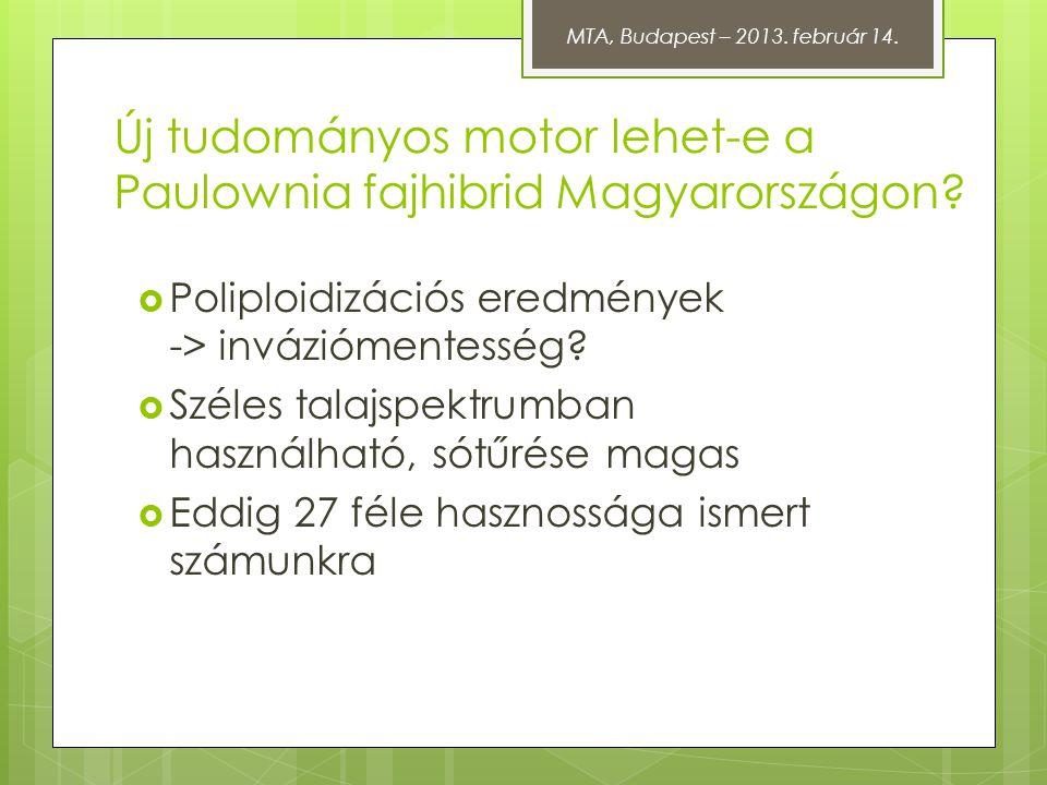 Új tudományos motor lehet-e a Paulownia fajhibrid Magyarországon