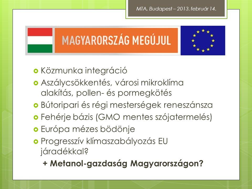 + Metanol-gazdaság Magyarországon